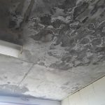 Remedial Solution for Concrete Cancer